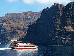 Dolphin and whale spotting in Los Gigantes