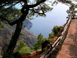 Viewpoint in El Hierro