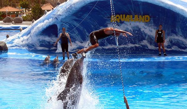 Aqualand tenerife water parks disfrutare - Aqua tenerife ...