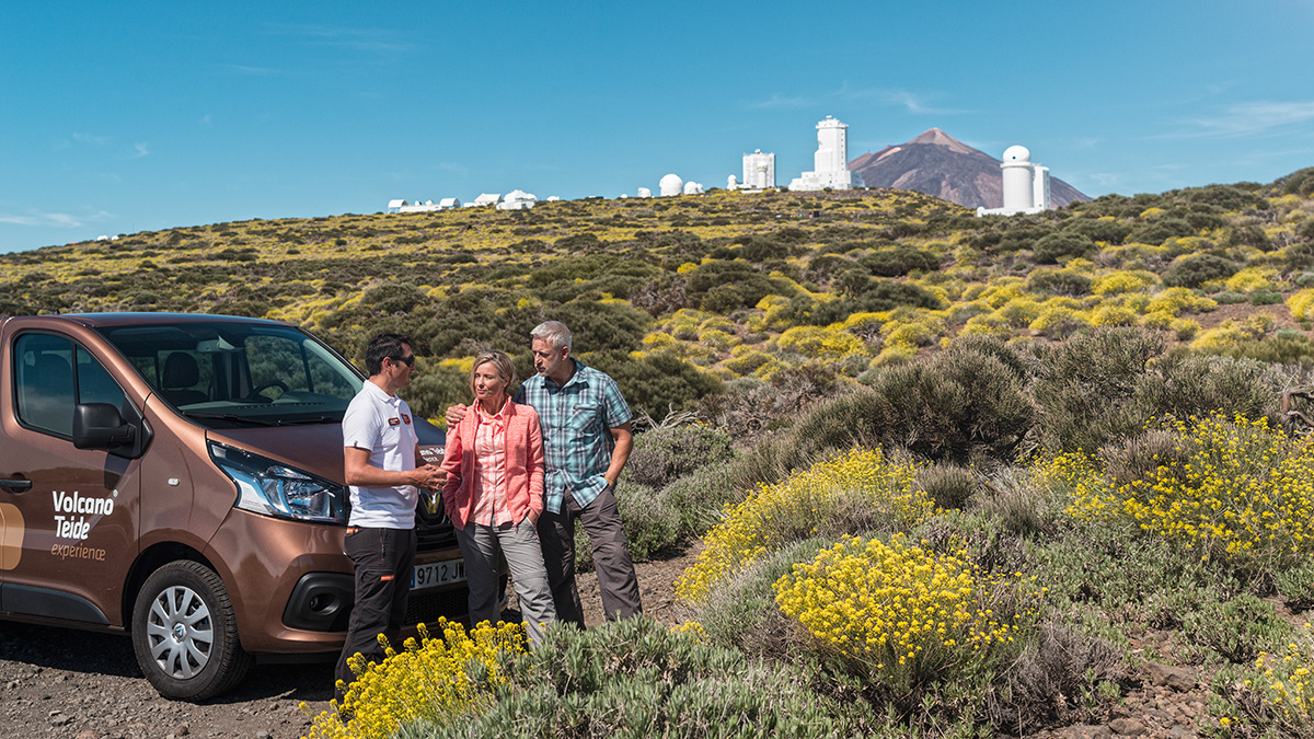 Private excursion to Tenerife Observatory and stars