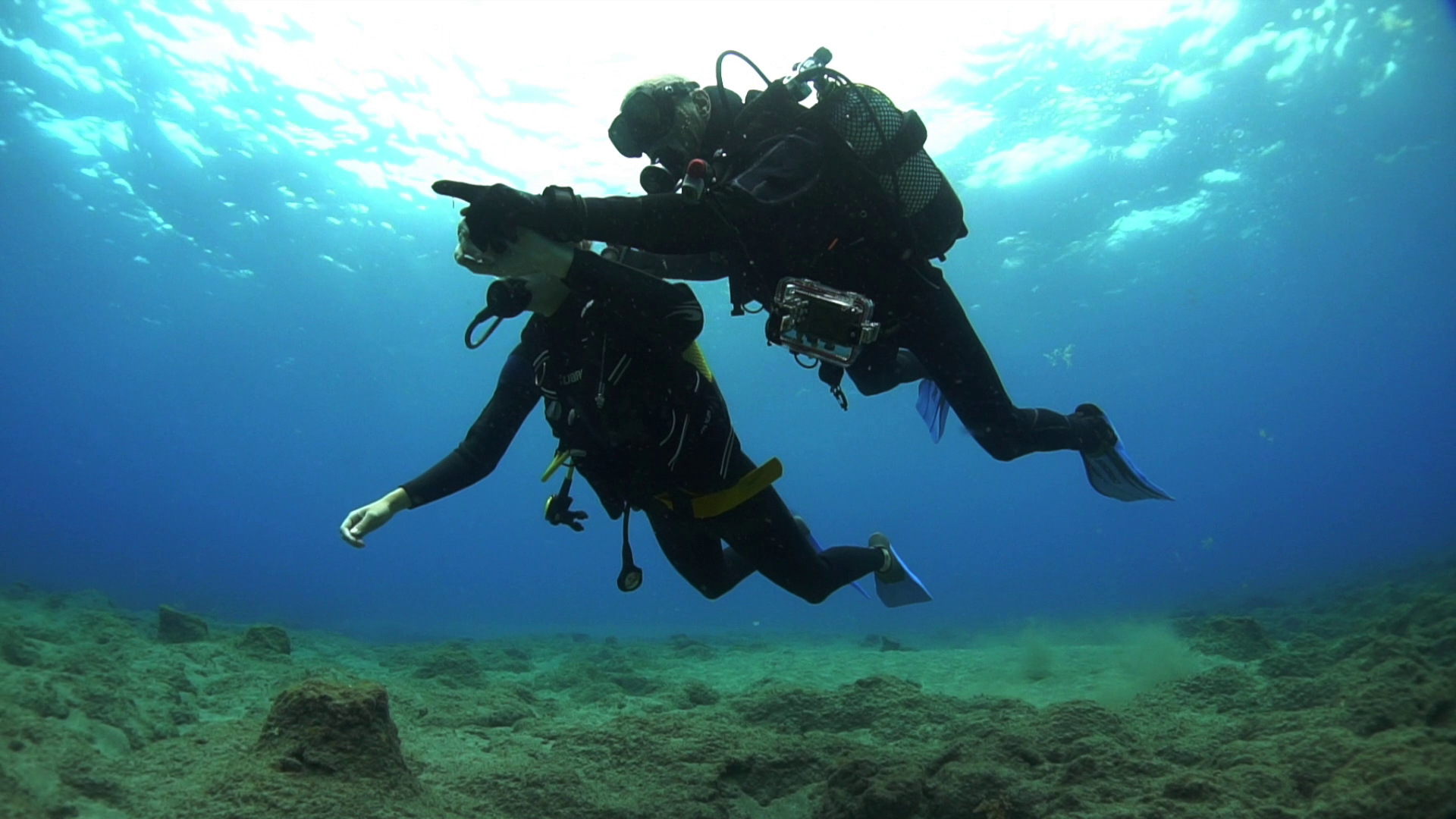 Initiation to scuba diving in the south of Tenerife